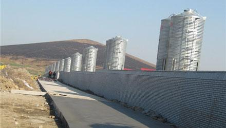 Ten Thousand Pigs Farm Project 1