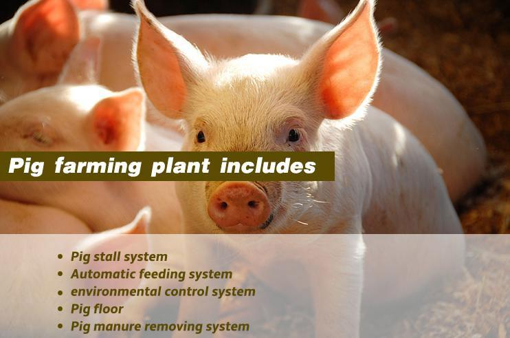Raising equipment for overall piggery farm