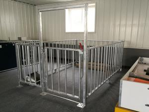 Crate/stall For Boars