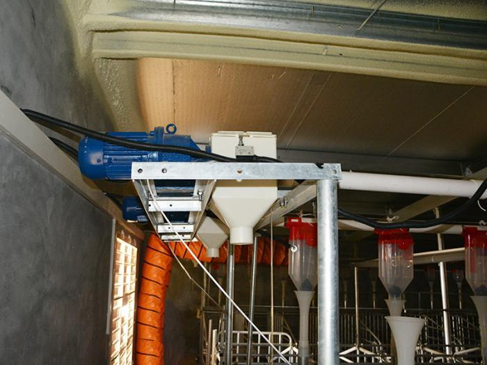 Auger feeding system