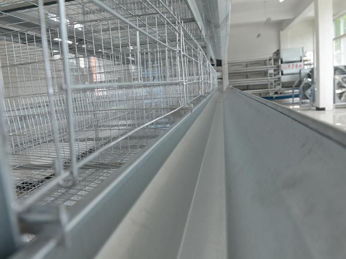 H type chicken cage system